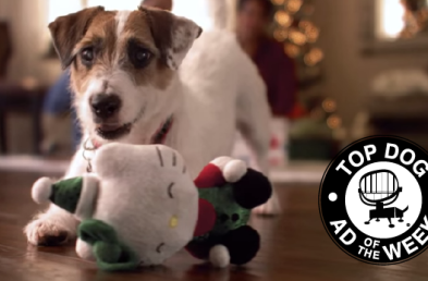 PetSmart and HP Ads Remind Us That It's The Little Things