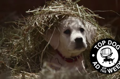 Budweiser's and McDonald's Super Bowl Ads Turn Up the Love