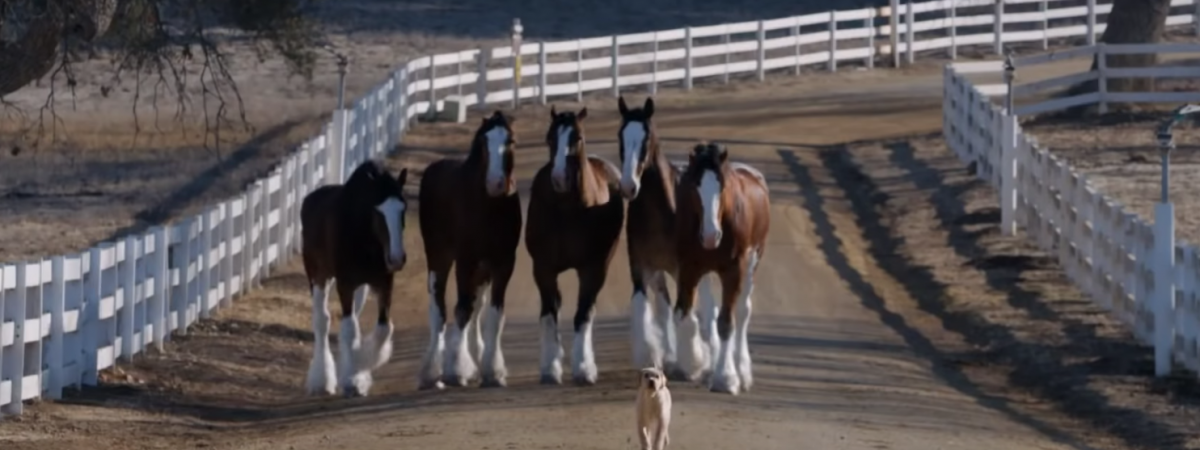Getting Emotional in Super Bowl LIII? Here's What Worked for Past Advertisers
