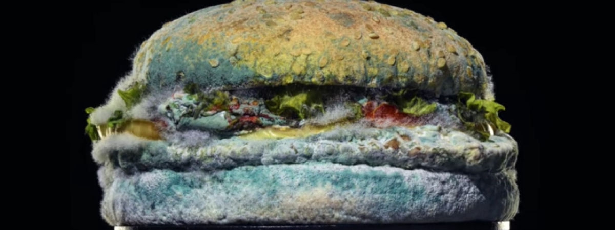 Burger King's Moldy Whopper Succeeded Miserably. Here's Why: