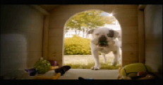 "Ad of the Week: PetSmart's ""Toys For Everyone"""