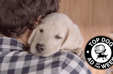 Budweiser and Nestle Ads Create Warm, Fuzzy Feelings