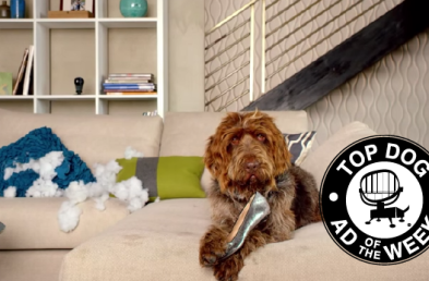 Nest and Subway take Ad of the Week Honors